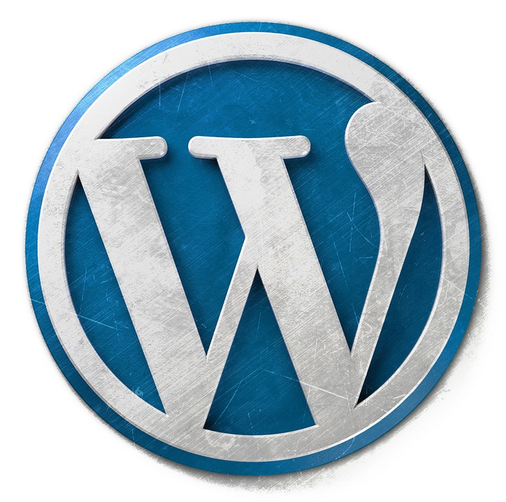 WIE FUNKTIONIERT WORDPRESS